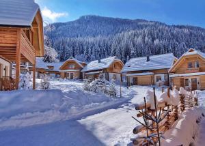 verschneiteLandschaft_Holzhütten_Bergchalet_Kuhgraben